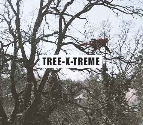 Tree X Treme Baumkletterer Werbefilm | MILLION MOTIONS - Videoproduktion Berlin Tempelhof